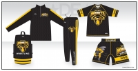 Pullman Hornets Gold Package